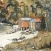 Rakiura/ Stewart Island Boatsheds.