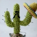 Cactus Pin-cushion (pins not included)