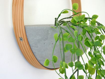 Wood and Concrete Indoor Wall Planter
