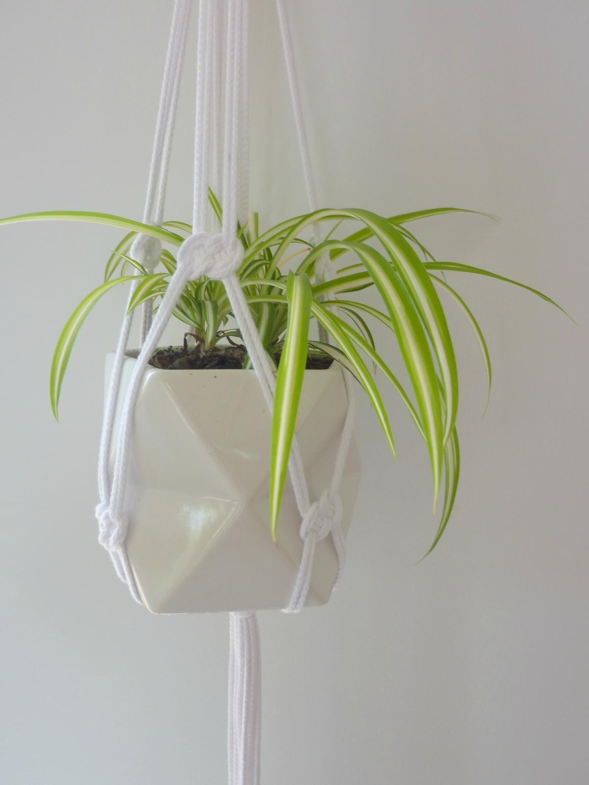 The Duo Macrame Hanging Plant Holder Felt