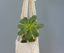 """Butterfly Belle"" macrame hanging pot plant holder"