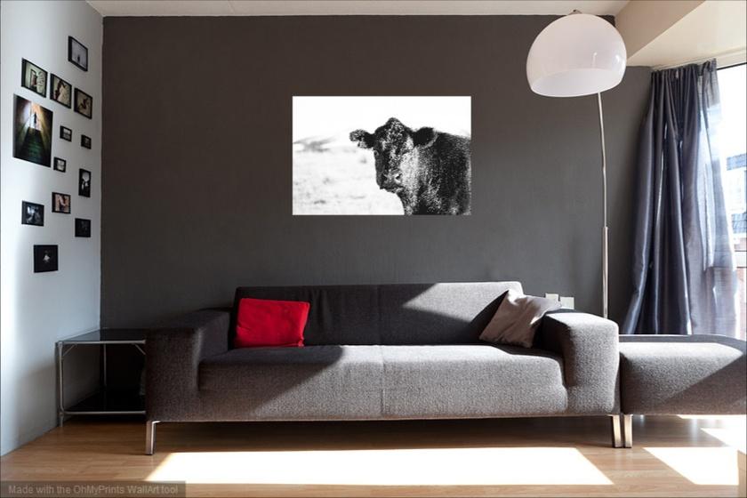 'Black Cow' canvas