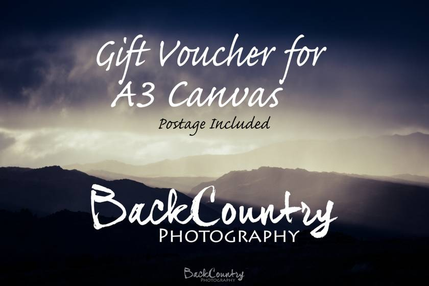 Gift Voucher - one A3 size BackCountry Canvas