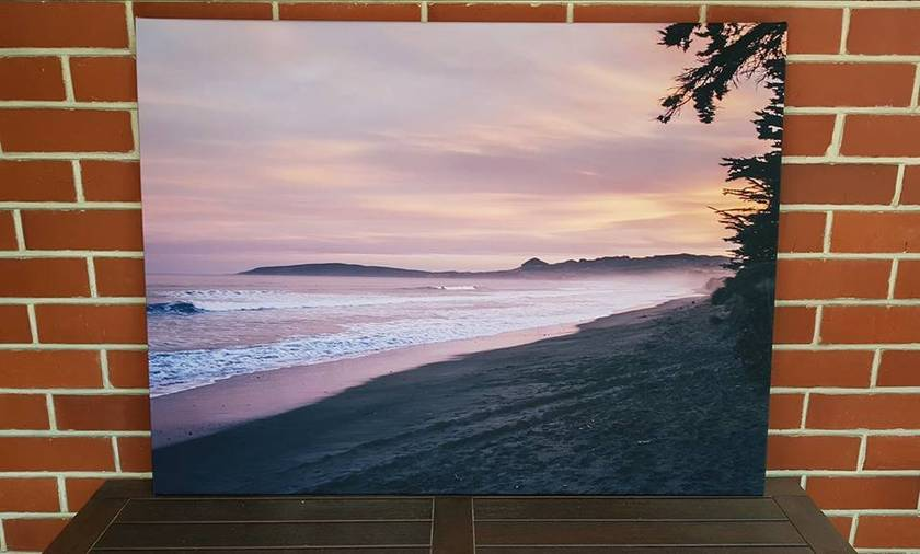 'Shag Point' canvas