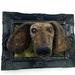 Dachshund Dog - Framed Fibre Art NZ Made