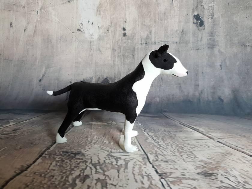 Bull Terrier - SALE
