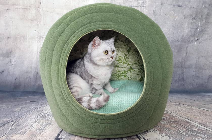 Eco CAT BED - NZ Made