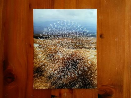 SALE: New Zealand Nature Mandala Photograph Print - Flowers Of New Zealand / Tongariro