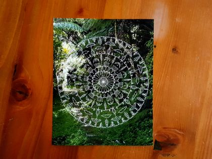SALE: New Zealand Nature Mandala Photograph Print - Tribal Flowers / Arataki