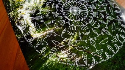 SALE: New Zealand Nature Mandala Photograph Print - Tribal Flowers / Arataki