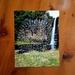 New Zealand Nature Mandala Photograph Print - Flowers Of New Zealand / Hunua Falls
