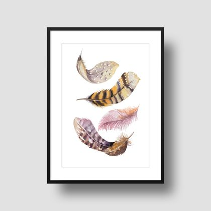 Watercolour feather combo pack 3 x 8x10 or A4 prints -  Feather Print, Illustration Print, Wall Print