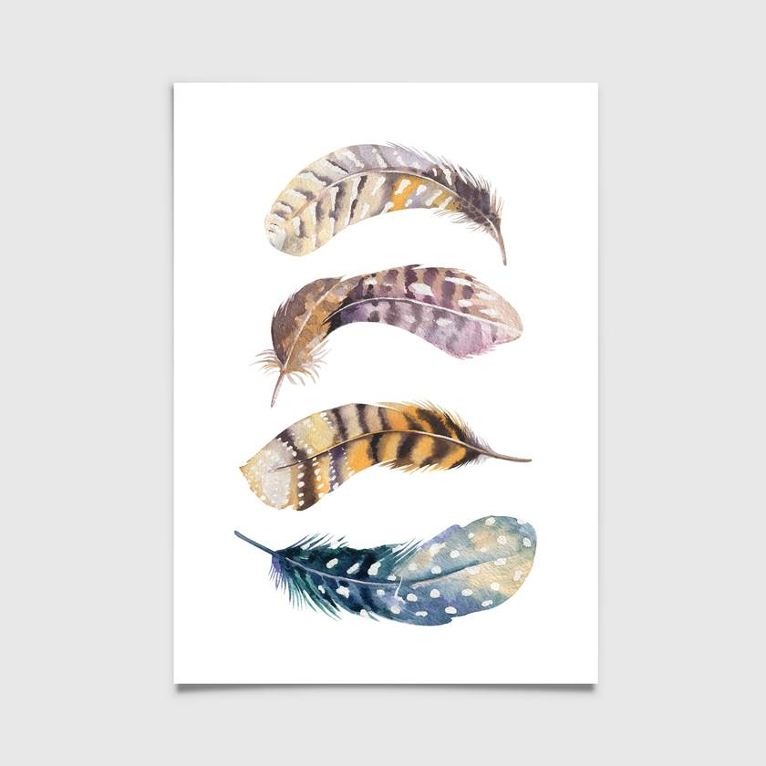 Updated - Watercolour feathers 8x10 or A4 print - 4 to choose from -  Feather Print, Illustration Print, Wall Print