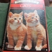 Vintage Cat Book Jotter