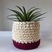 ECO Small pot (cream & red)