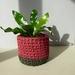 Small planter (terracotta & olive)