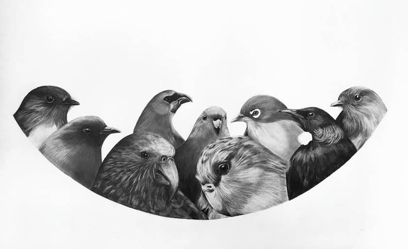 Bird Waka 2018 A2 Size