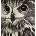 Night Owl #4 2015 A2 Print