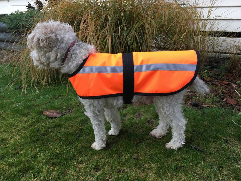 Custom Made Dog Jacket- Extra Small- Medium - Warm Waterproof