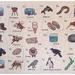Kiwi Alphabet 26 piece puzzle