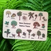 NZ Native Trees 10pce Handcrafted Wooden Puzzle