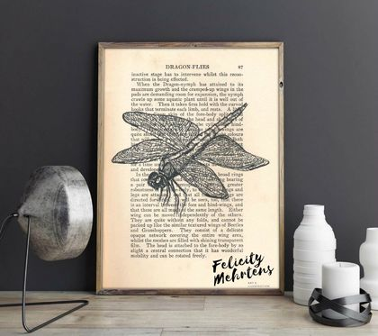 'Dragonfly Landing' A5 Print
