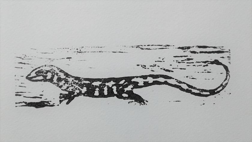 Otago Skink - wood block print
