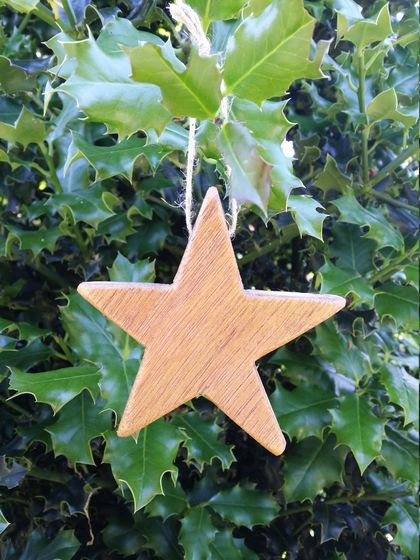 Twinkle twinkle little...Xmas? Natural star