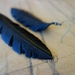 """Medium sized """"Feather"""" earrings, up-cycled"""