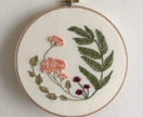 French Knots and Ferns