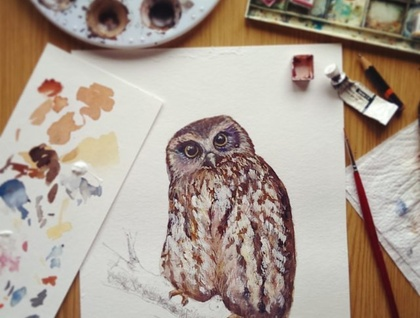 Ruru (or Morepork) illustrated New Zealand native owl - Large print, from original watercolor and ink painting artwork