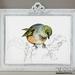New Zealand native birds prints - Waxeye - A4