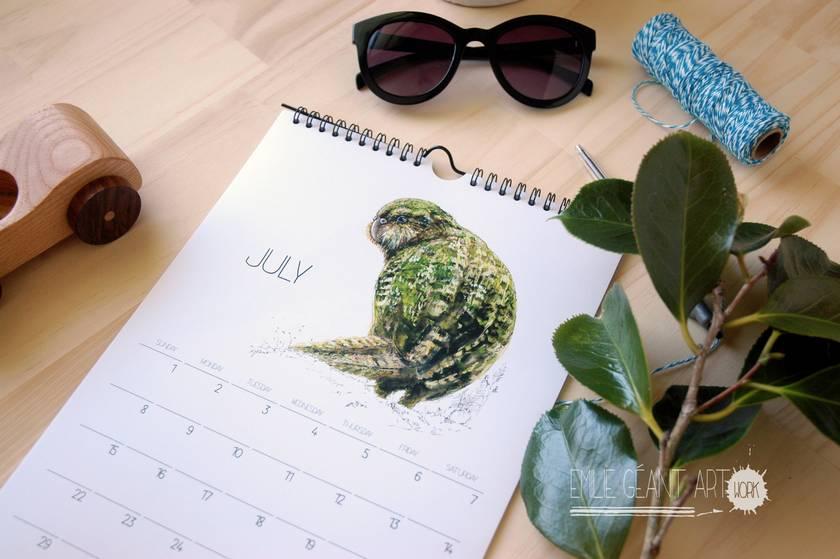 2018 wall calendar with New Zealand native birds illustrations