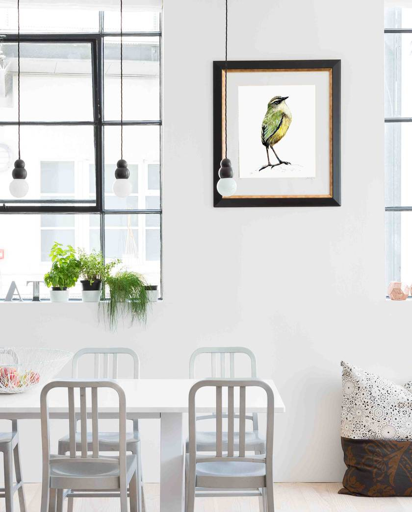 Rock Wren (Tuke) New Zealand native bird illustration, print from original watercolor and ink painting artwork