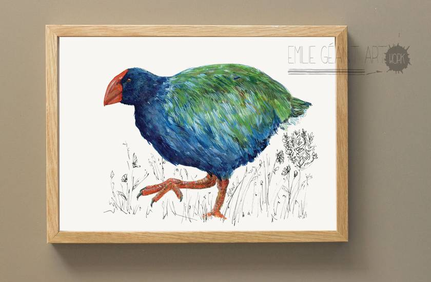Takahe, New Zealand native bird illustration A3 print, from original watercolor and ink painting artwork