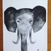 Elephant head watercolour