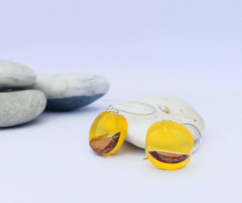 Bioresin & Recycled Rimu Small Circle Earrings | Felt