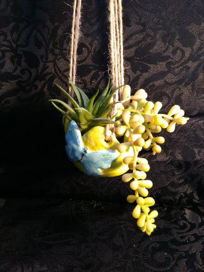 Set of 2 Ceramic Hanging Planters with Butterfly