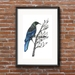 """""""Tui"""" - Fine Art Watercolor Print"""