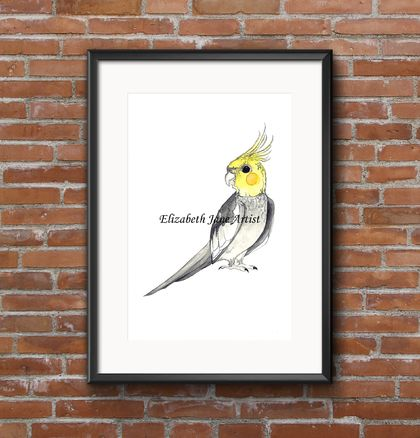 """Cockatiel"" Fine Art Watercolour Print"