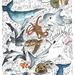 """Under the Sea"" Montage - A3 Fine Art Print"