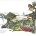 """""""Te Rerenga Wairua - Cape Reinga"""" - A3 Fine Art Print"""