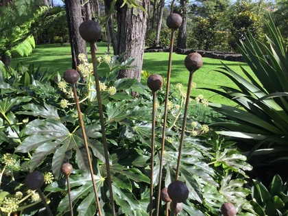 SEED PODS - MOVE AND CHIME IN THE WIND .
