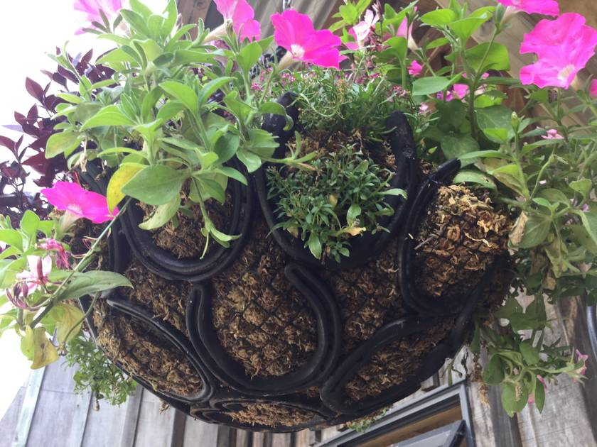HANGING BASKET - UNIQUE - MADE FROM HORSESHOES
