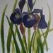 Purple Irises - original watercolour painting, by Vicky Curtin