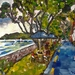 Russell - Bay of Islands - original oil painitng, by Vicky Curtin