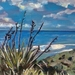 Ngarunui Beach, Raglan - original oil painting, by Vicky Curtin