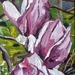 Magnolias no.1 - small original oil painting, by Vicky Curtin