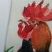 Rooster - original watercolour painting, by Vicky Curtin