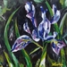 Forest Iris - small original oil painting, by Vicky Curtin